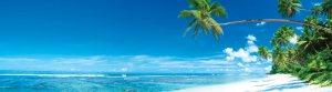 Caribbean-Island
