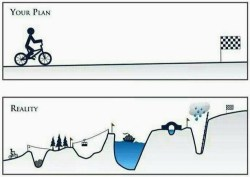 ups and downs goals plans