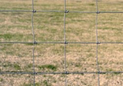 square fencing